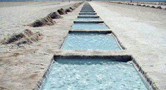 Mineras australianas exploran yacimientos de litio en Argentina