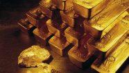 Gold Reserve planea avances en proyecto Siembra Minera en Venezuela