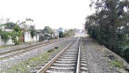 Se evalúa proyecto ferroviario para transportar minerales en Perú